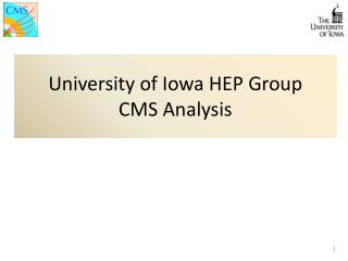 University of Iowa HEP Group  CMS Analysis