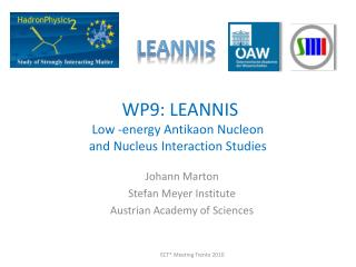 WP9: LEANNIS  Low -energy Antikaon Nucleon  and Nucleus Interaction Studies