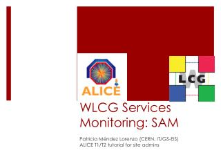 WLCG Services Monitoring: SAM