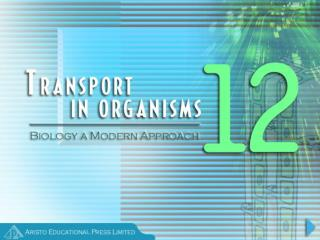 When do Organisms need Transport Systems?
