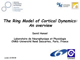 The Ring Model of Cortical Dynamics: An overview