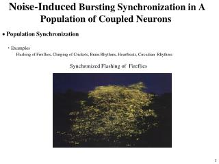 Noise-Induced Bursting Synchronization in A Population of Coupled Neurons