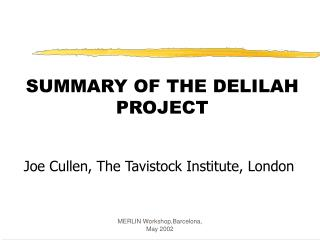 SUMMARY OF THE DELILAH PROJECT