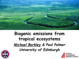 Biogenic emissions from  tropical ecosystems