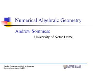 Numerical Algebraic Geometry