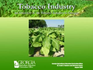 Tobacco Industry An Overview of the Tobacco Industry in Georgia