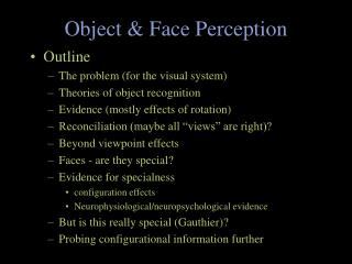 Object & Face Perception