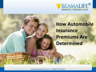 How Automobile Insurance Premiums Are Determined