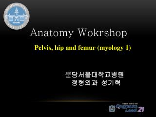 Anatomy  Wokrshop