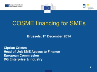 CREDIT RISK MANAGEMENT  SME SECTOR Specific reference to credit risk insurance