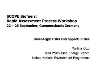 SCOPE Biofuels: Rapid Assessment Process Workshop 22 – 25 September, Gummersbach/Germany