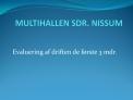 MULTIHALLEN SDR. NISSUM