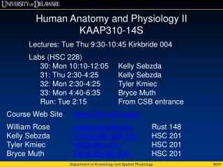 Human Anatomy and Physiology II  KAAP310-14S Lectures: Tue Thu 9:30-10:45  Kirkbride  004
