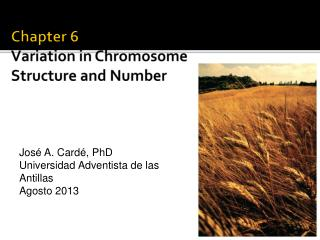 Chapter 6 Variation in Chromosome Structure and Number