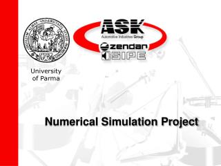 Numerical Simulation Project