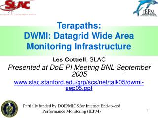 Terapaths: DWMI: Datagrid Wide Area Monitoring Infrastructure