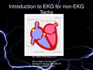 Introduction to EKG for non-EKG Techs