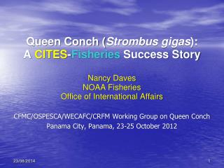 Queen Conch ( Strombus gigas ):  A  CITES - Fisheries  Success Story  Nancy  Daves NOAA Fisheries