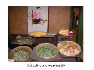 Extracting and weaving silk