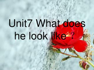 Unit7 What does he look like  ?