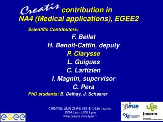 contribution in  NA4 (Medical applications), EGEE2