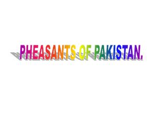 PHEASANTS OF PAKISTAN.