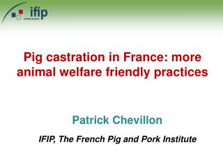 Pig castration in France: more animal welfare friendly practices