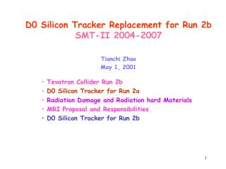 D0 Silicon Tracker Replacement for Run 2b SMT-II 2004-2007