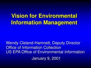 Vision for Environmental Information Management