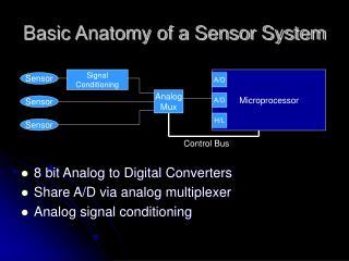 Basic Anatomy of a Sensor System