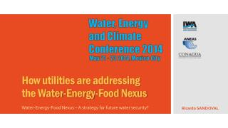 How utilities are addressing the Water-Energy-Food Nexus