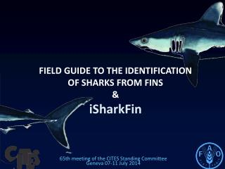 FIELD GUIDE TO THE IDENTIFICATION  OF SHARKS FROM FINS & iSharkFin