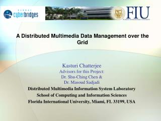 A Distributed Multimedia Data Management over the Grid