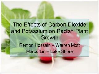 The Effects of Carbon Dioxide and Potassium on Radish Plant Growth