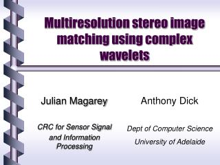 Multiresolution stereo image matching using complex wavelets