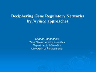 Deciphering Gene Regulatory Networks by  in silico  approaches