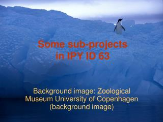 Some sub-projects  in IPY ID 63