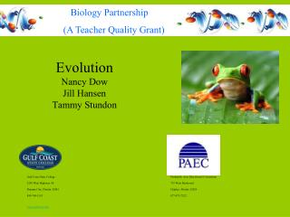 Evolution Nancy Dow Jill Hansen Tammy Stundon