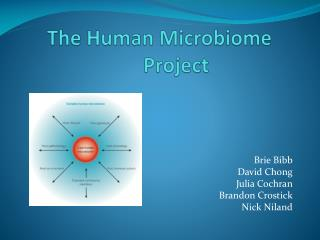 The Human  Microbiome  Project