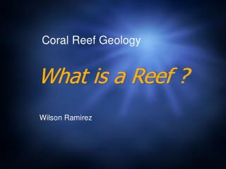 What is a Reef ?