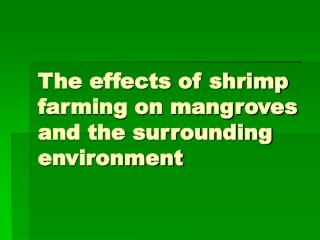 The effects of shrimp farming on mangroves and the surrounding environment