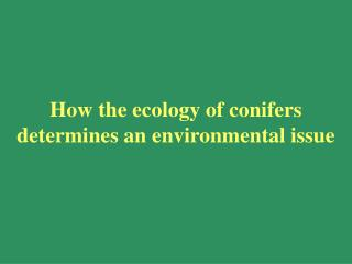 How the ecology of conifers determines an environmental issue