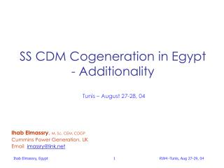 SS CDM Cogeneration in Egypt - Additionality