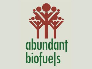"""Food vs. Fuel""  Controversy over Biofuels"