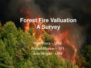 Forest Fire Valluation  A Survey