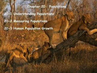 Chapter 20:  Populations