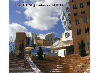The iGEM Jamboree at MIT