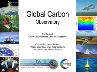 Integrated Global Carbon Observations - IGCO