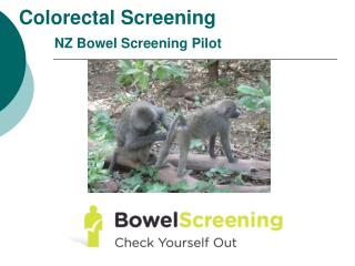 Colorectal Screening NZ Bowel Screening Pilot