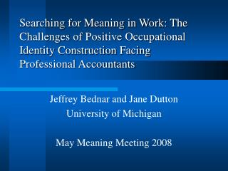 Searching for Meaning in Work: The Challenges of Positive Occupational Identity Construction Facing Professional Account